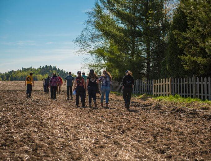 Gestion et technologies d'entreprise agricole - groupe d'étudiants marchant dans un champ