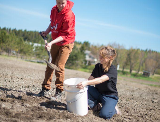 étudiant et une étudiante de Gestion et technologies d'entreprise agricole prélèvent des échantillons de sol