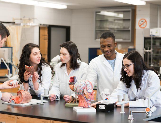 Groupe d'étudiants en Sciences de la nature pendant un laboratoire de biologie