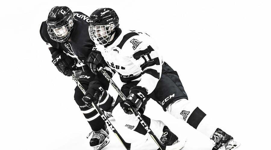 Joueurs de hockey en action 2018